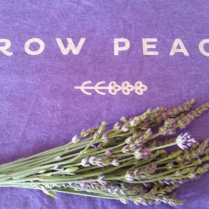 growpeacebundle